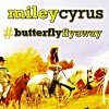 Miley Cyrus feat. Billy Ray Cyrus - Butterfly Fly Away